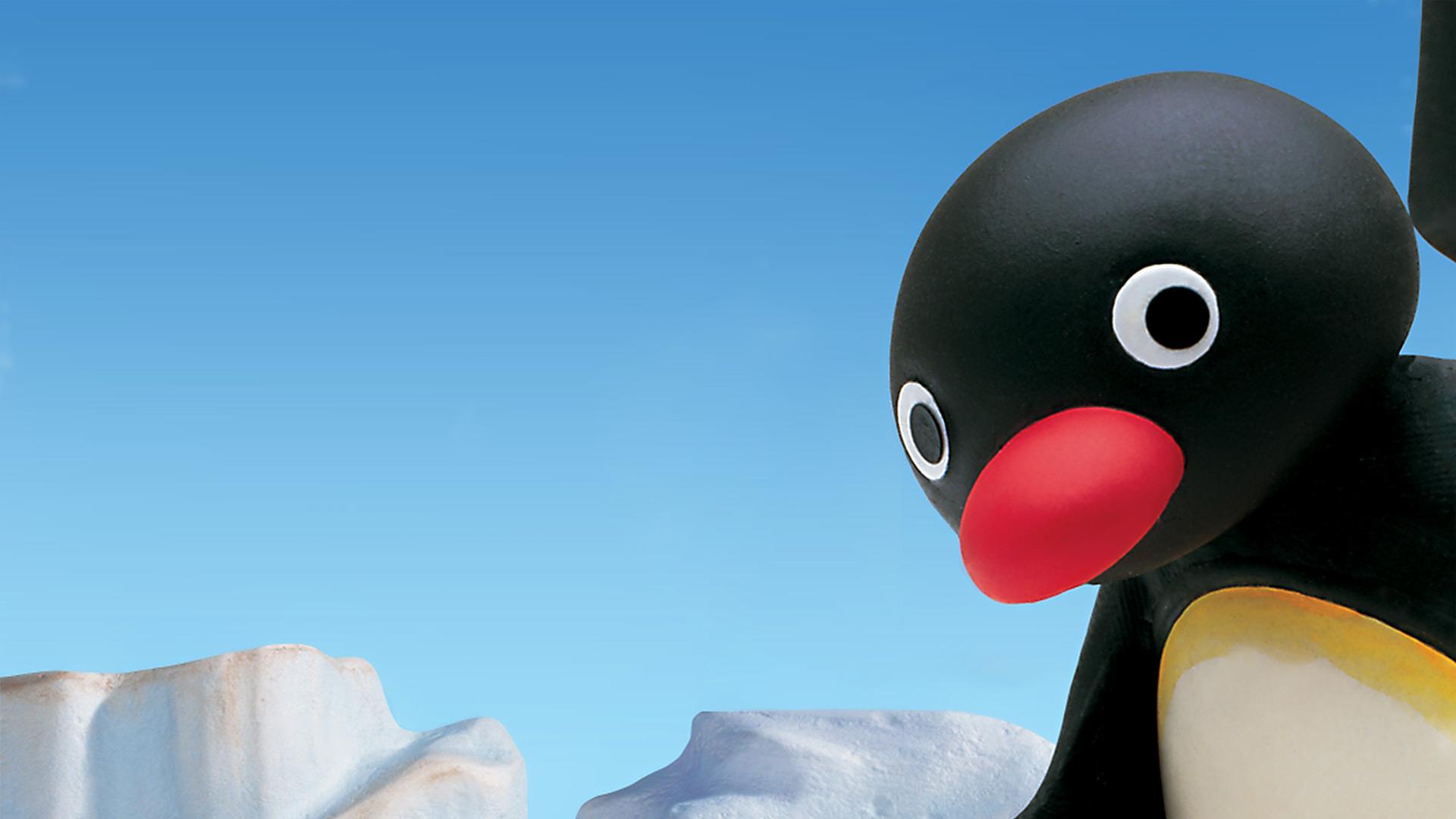 Pingu right